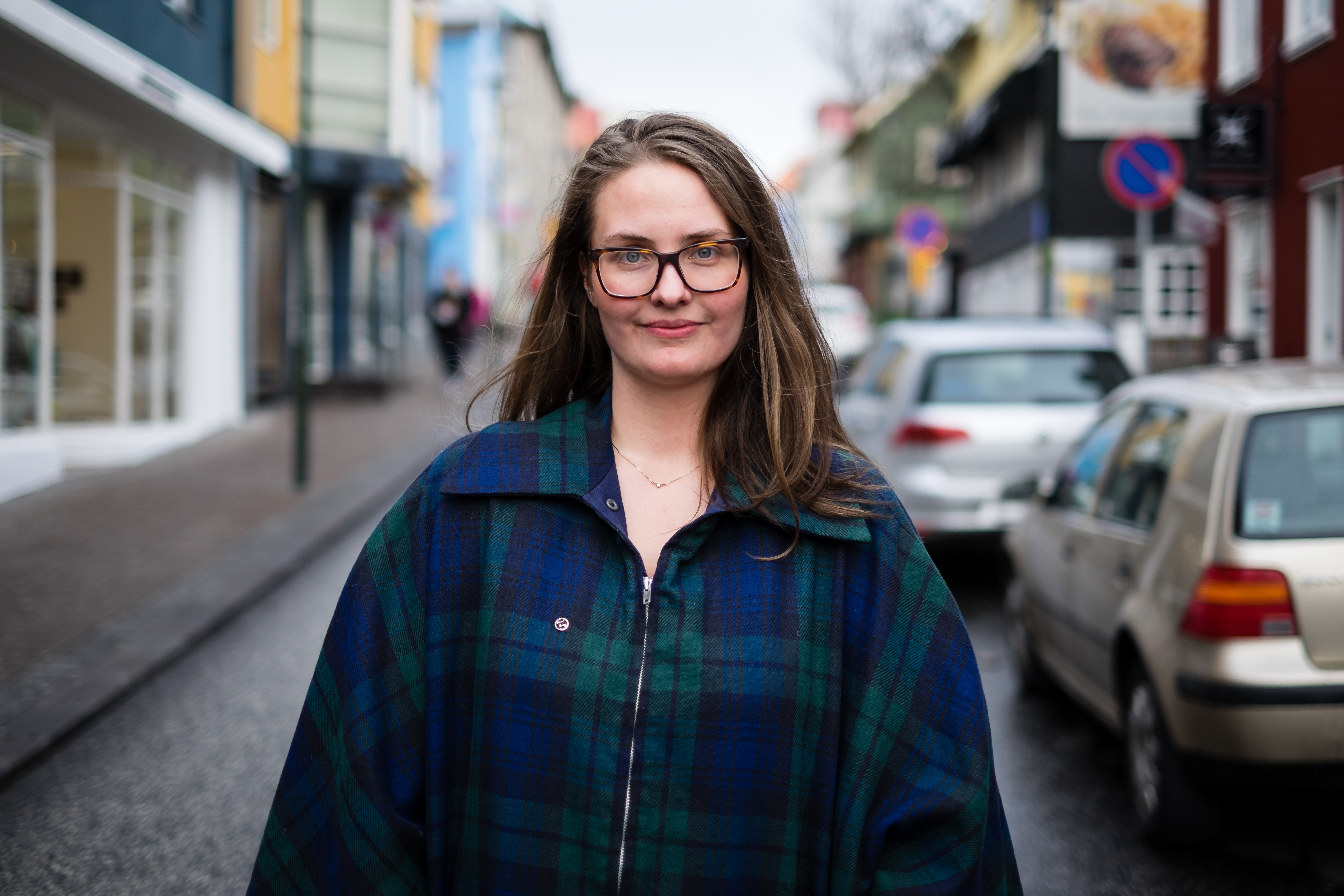 Strangers In Reykjavik